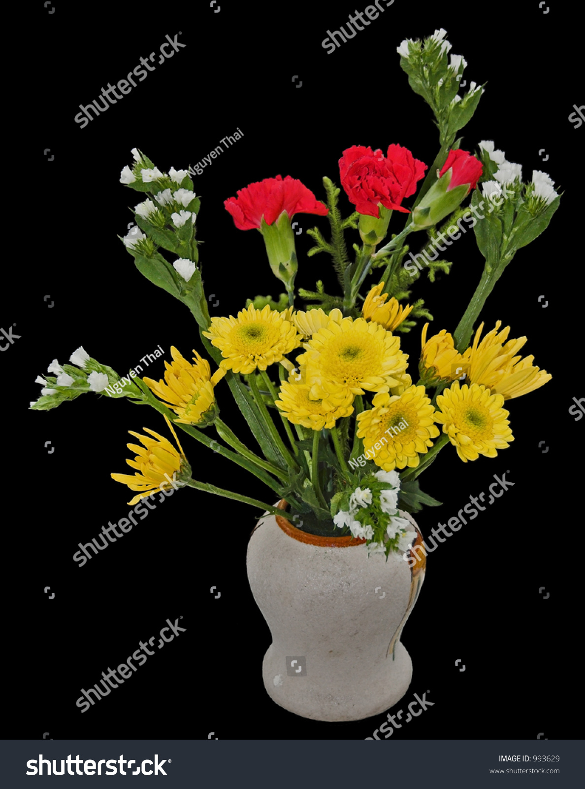 Welcome Bouquet Flowers Vase Isolated On Stock Photo Edit Now