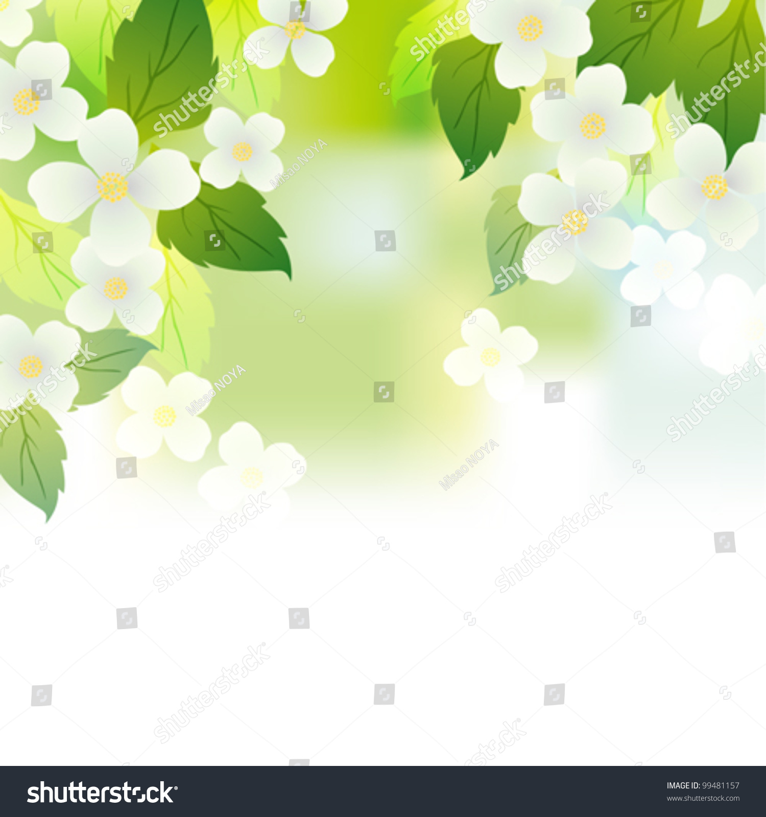 Jasmine Background Stock Vector 99481157