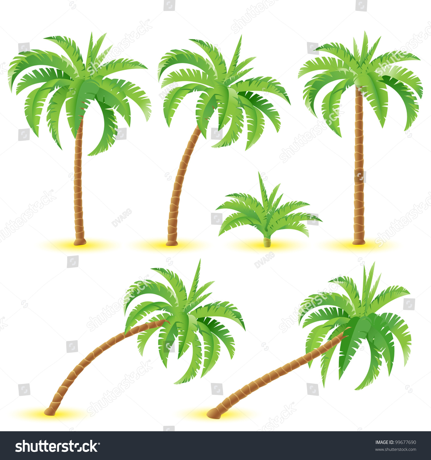 Coconut Palms Illustration On White Background Stock Vector HD ...